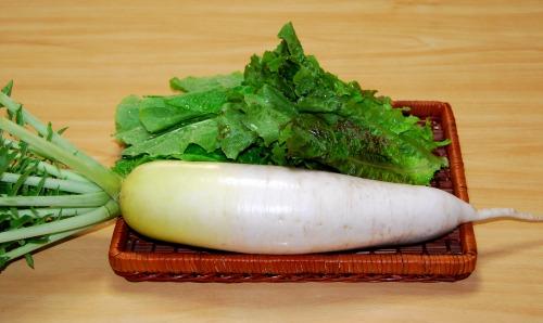 s-09.10.28 昨日の収穫.大根、チシャ菜.jpg