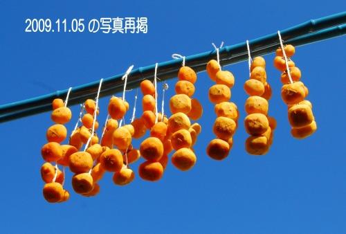 s-09.12.10 吊し柿11月5日の再掲.jpg