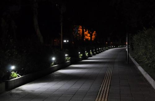 s-10.08.26 夜明け前.和歌山城公園への歩道.jpg