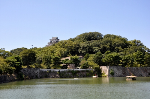 s-10.09.04 和歌山城全景.jpg