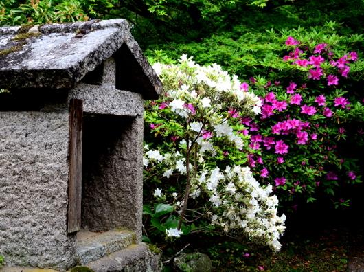 1-14.05.04 長岳寺-2.jpg