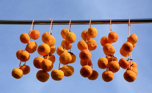 1-14.11.23 吊し柿-3.jpg