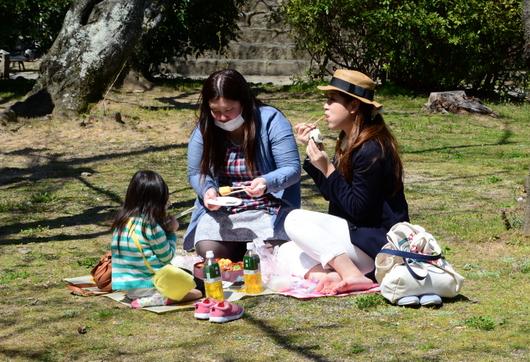 1-15.03.29 城内桜-3.jpg