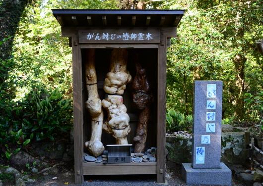 1-15.06.03 26番 金剛頂寺-3.jpg