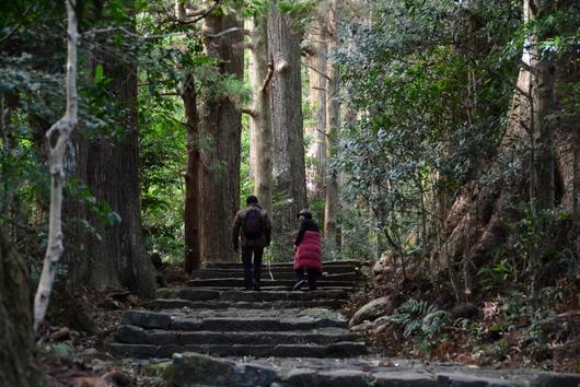 1-16.03.07 1番 熊野古道.jpg