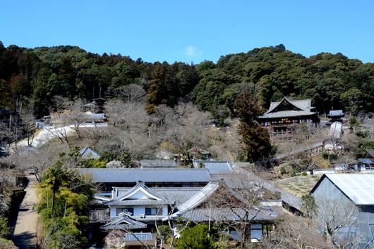 1-16.04.05 8番 長谷寺全景.jpg