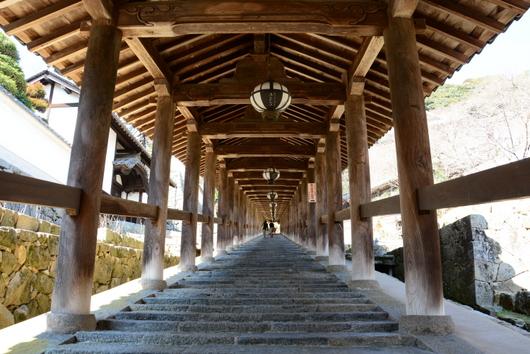 1-16.04.05 8番 長谷寺屋根付登廊.jpg