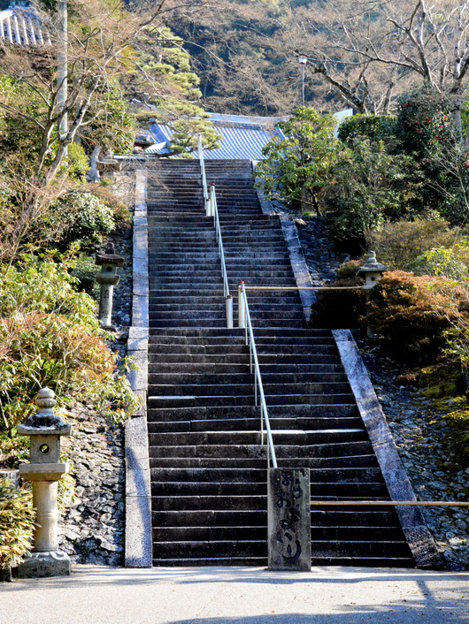 1-16.04.09 10番 三室戸寺本堂への石段.jpg