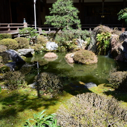 1-16.04.23 12番 岩間寺芭蕉の池-1.jpg