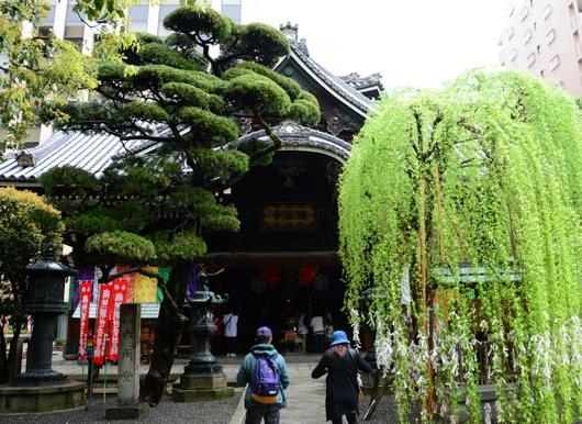 1-16.05.16 18番 頂法寺(六角堂) 本堂.jpg