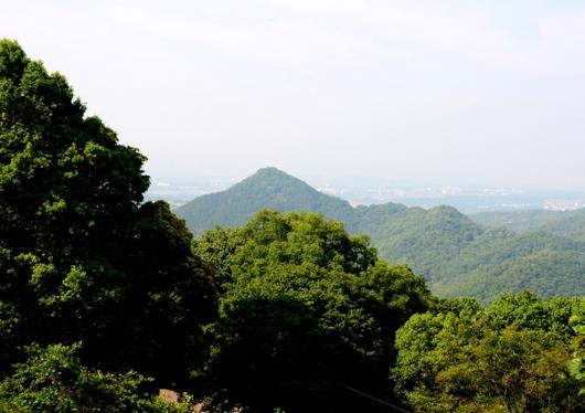 1-16.06.04 番外 花山院 見晴らし.有馬富士.jpg