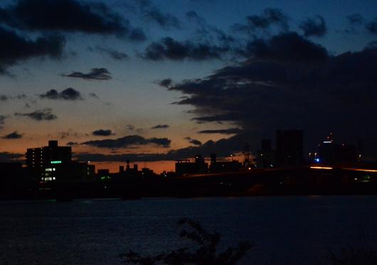 1-16.08.27 早朝散歩-1.jpg
