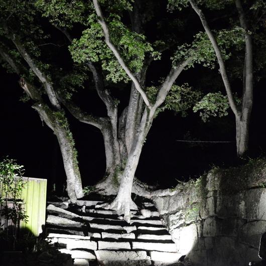 1-16.10.04 竹灯夜-11.jpg