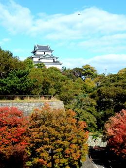 1-16.11.18 和歌山城公園の紅葉-3.jpg