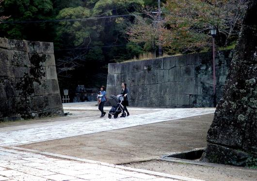 1-16.11.24 散歩-1.jpg