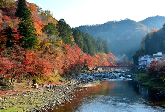 1-16.11.26 香嵐渓の紅葉-1.jpg