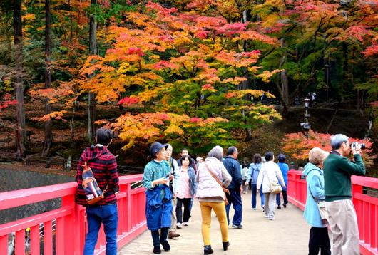 1-16.11.26 香嵐渓の紅葉-4.jpg