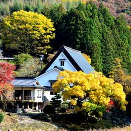 1-16.11.26 香嵐渓の紅葉-6.jpg