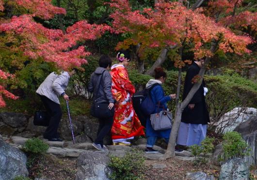 1-16.12.01 結婚式記念写真の前撮り D.jpg