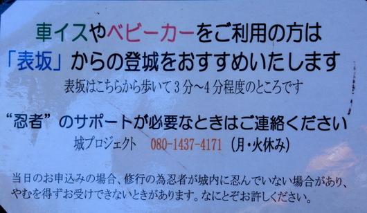 1-17.01.10 忍者-2.jpg