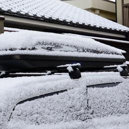 1-17.01.24 積雪-2.jpg
