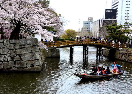1-17.04.09 城内桜-11.jpg