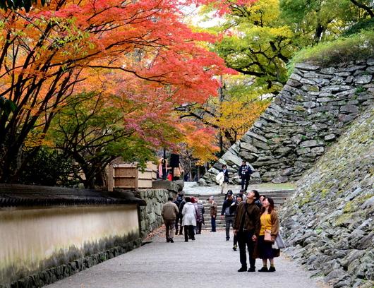 1-17.11.30 和歌山城公園の紅葉-1.jpg