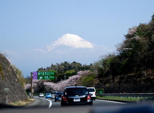 1-18.04.04 富士川SA付近.jpg