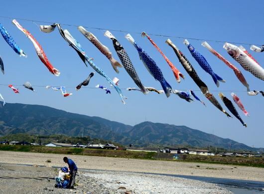 1-18.05.04 九度山町の鯉のぼり.jpg