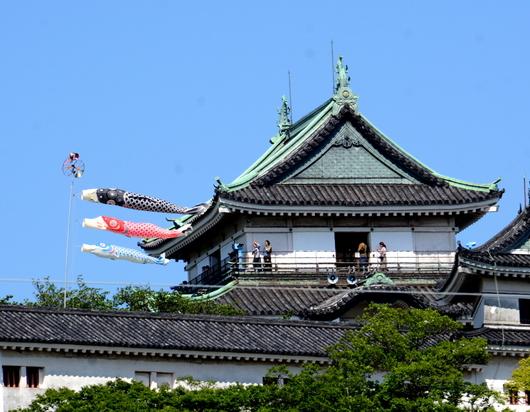 1-18.05.04 和歌山城の鯉のぼり.jpg