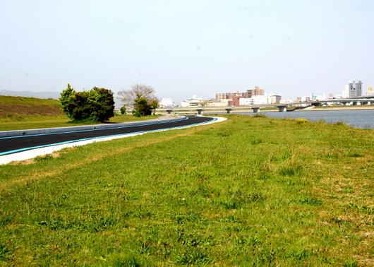 1-18.05.13 紀ノ川河川敷.jpg
