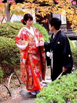 1-18.12.05 和歌山(城)公園の紅葉-11.jpg