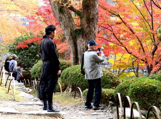 1-18.12.05 和歌山(城)公園の紅葉-6.jpg