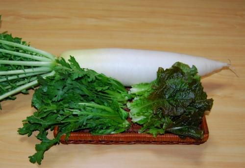 s-10.12.13 昨日の収穫、春菊.大根.チシャ菜.jpg